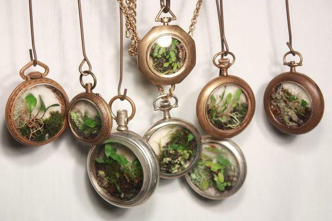 jardin miniature15
