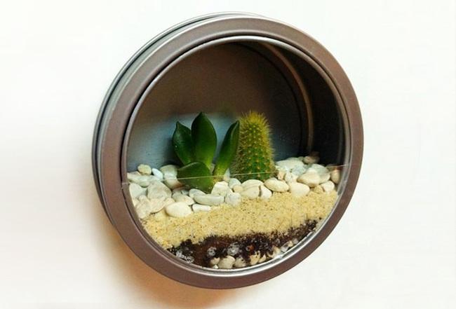 jardin miniature22