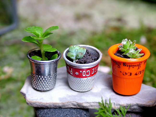 jardin miniature23