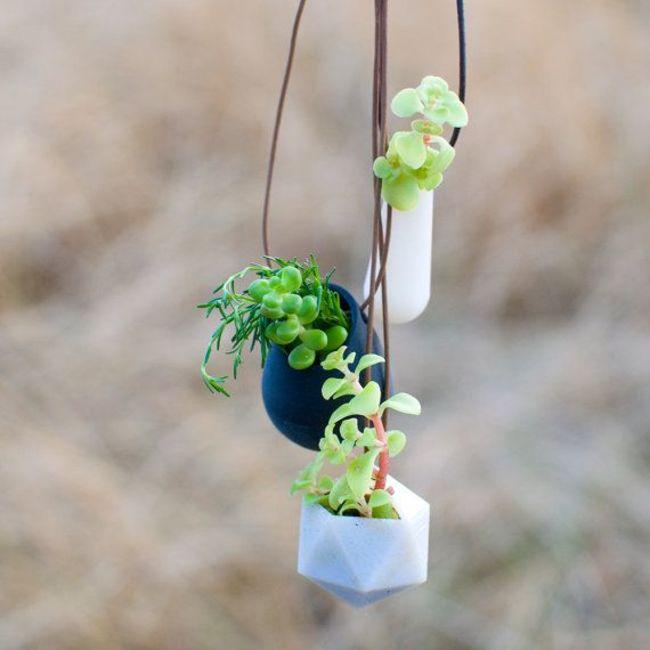 jardin miniature8