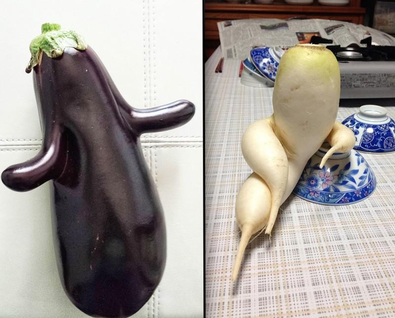 Les fruits et légumes peuvent être moches, mais bons quand même ! 16