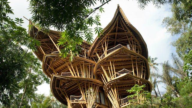 Une construction spectaculaire en bambou 2