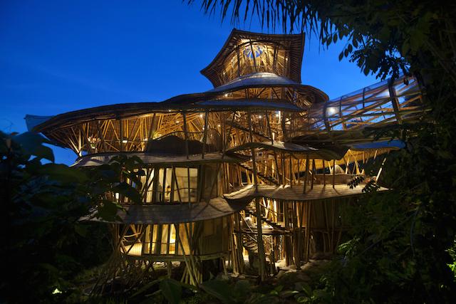 maison-bambou-6