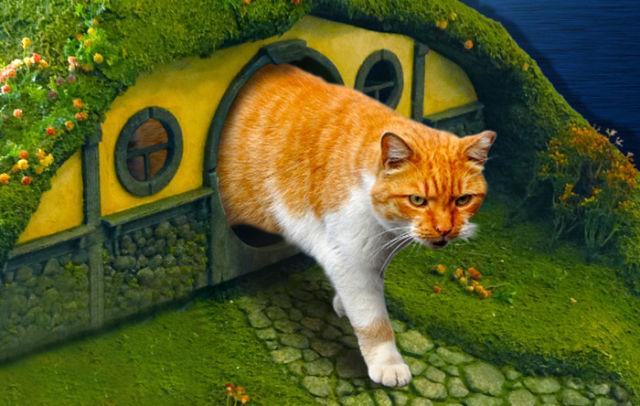 ORIGINAL : La maison du Hobbit pour nos amis les chats  1