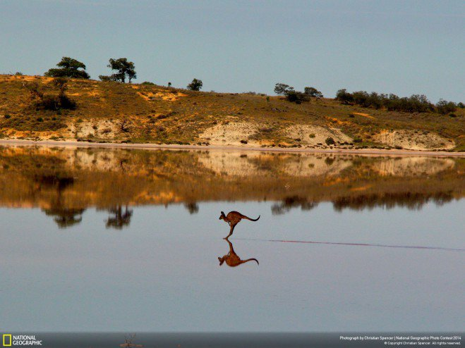 concours photo national geographic