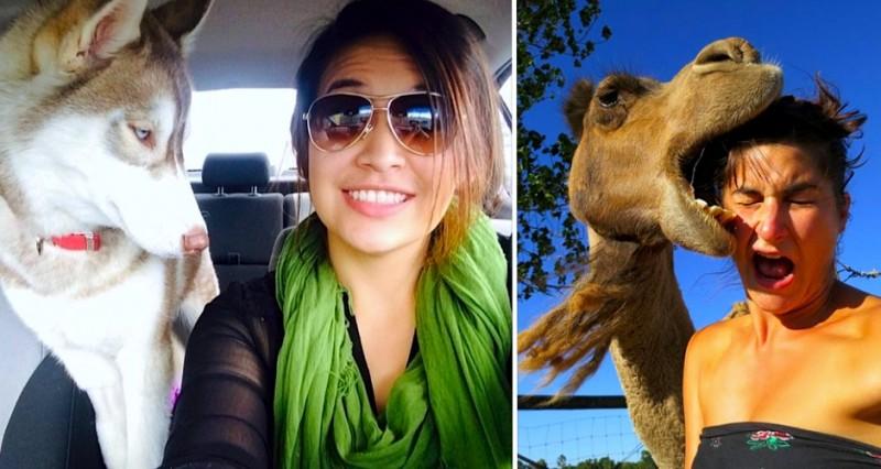 Selfies animaux