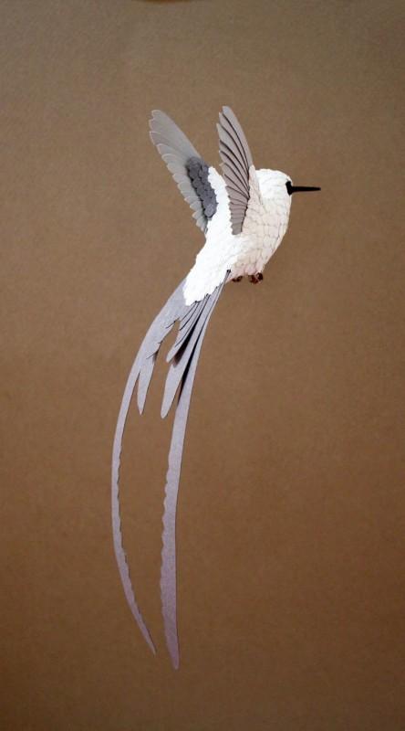 oiseau-papier-11