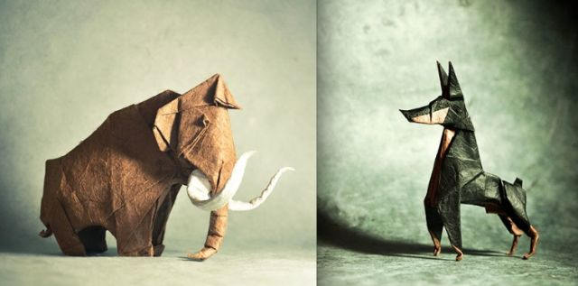 Les plus beaux modèles d'origami 19