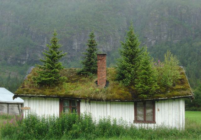 paysage-norvege-conte-fee-4