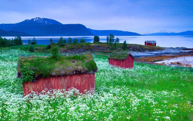 paysage-norvege-conte-fee-5