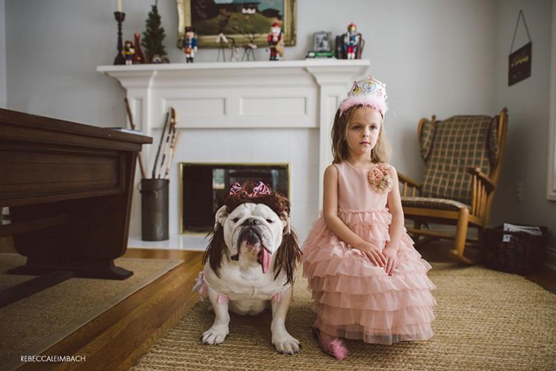 C'est l'histoire d'une amitié entre une petite fille et un bouledogue anglais 21