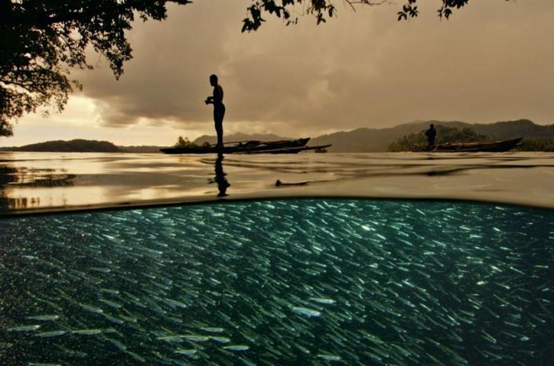 photo sous l'eau11