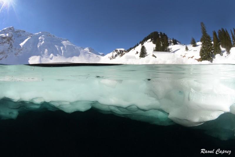 photo sous l'eau13