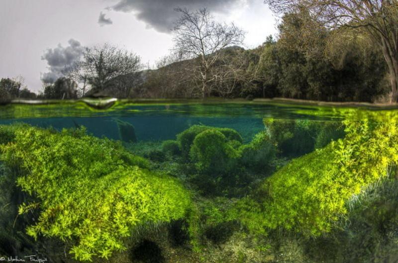 photo sous l'eau26
