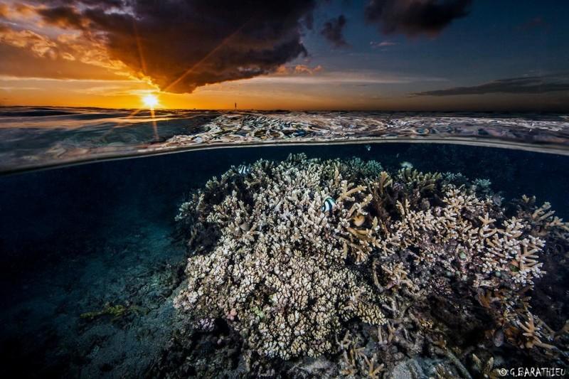 photo sous l'eau5