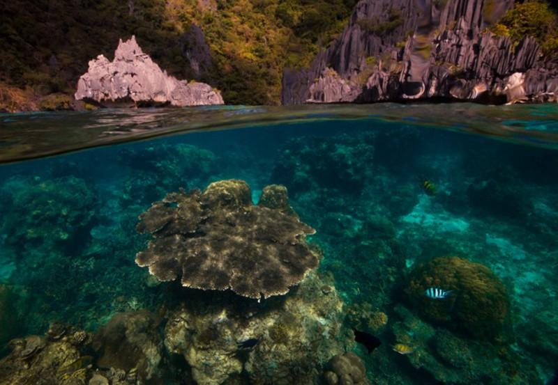 photo sous l'eau8