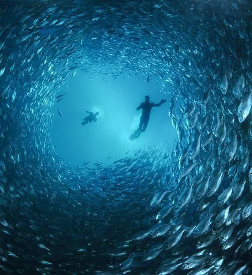 photos sous l'eau 24