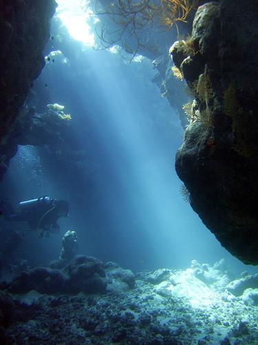 photos sous l'eau 7