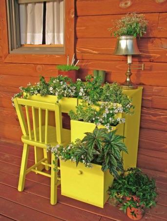 DECO : c'est bientôt le printemps, alors plantez ! 15