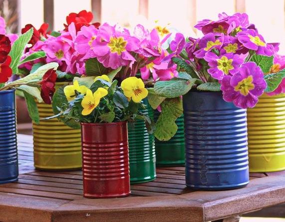 DECO : c'est bientôt le printemps, alors plantez ! 3