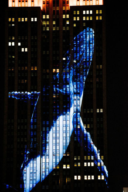projection-empire-state-espece-animale-11