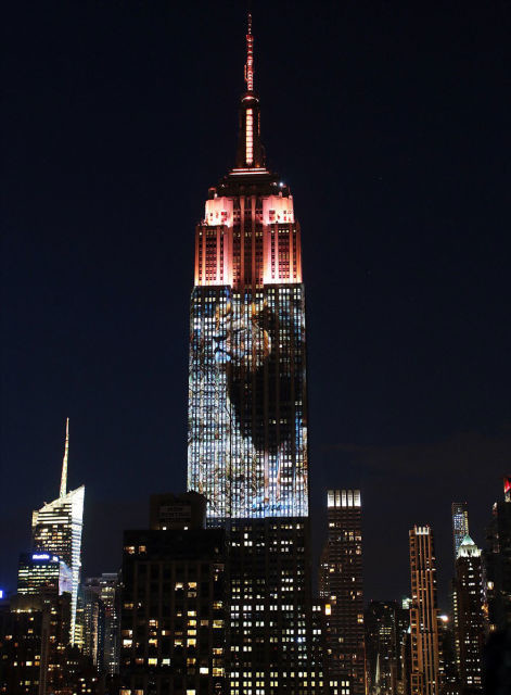 projection-empire-state-espece-animale-13