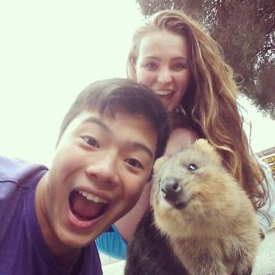 quokka-selfie-chakipet12