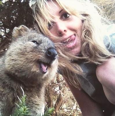 quokka-selfie-chakipet14