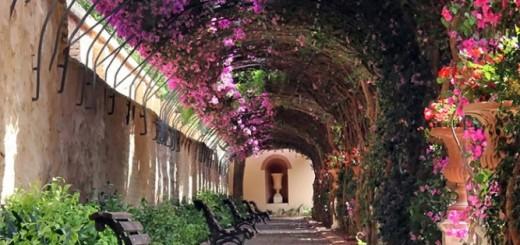 MAGIQUE: 15 rues bordées par les fleurs et les arbres 8