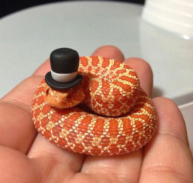 serpent-drole-chapeau-10