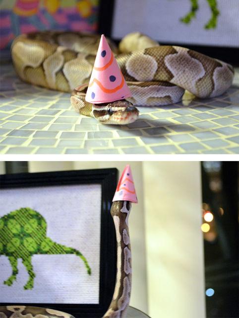 serpent-drole-chapeau-14