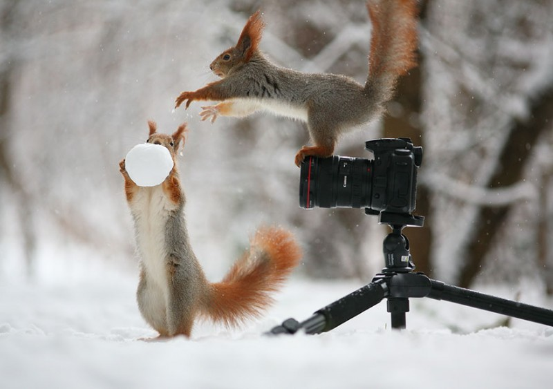 shooting9