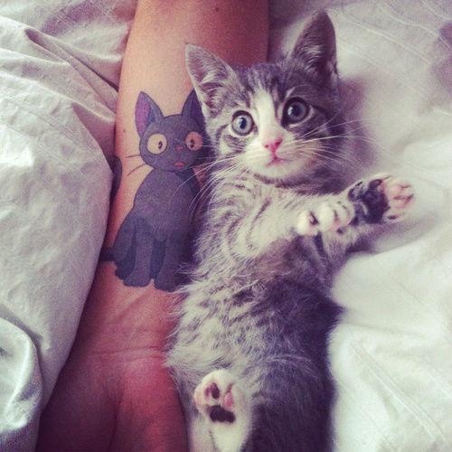 tatouage-chat-8