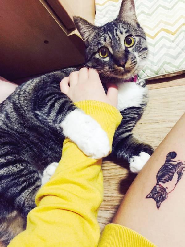 tatouage-chat-coree-6