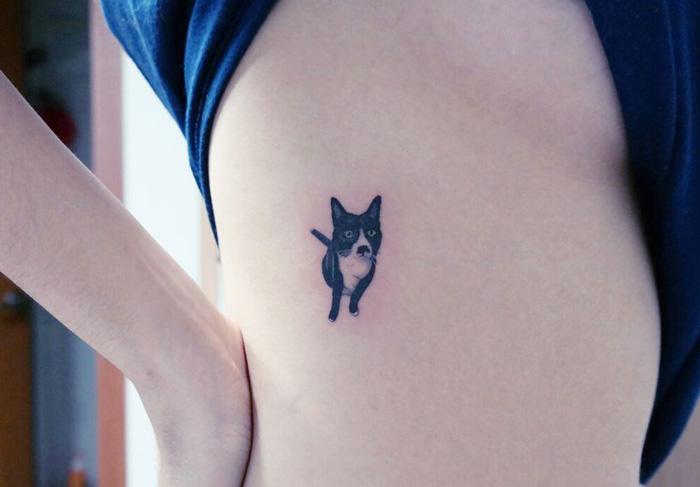 tatouage-chat-coree-7