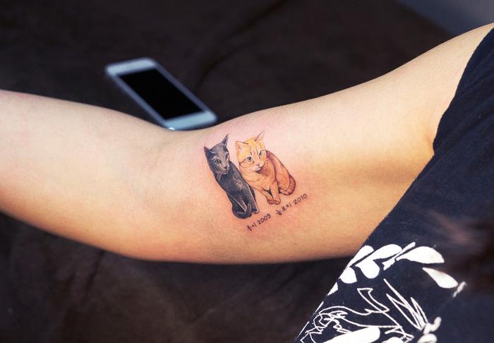 tatouage-chat-coree-8