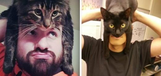 INSOLITE : Un chat en guise de chapeau 17