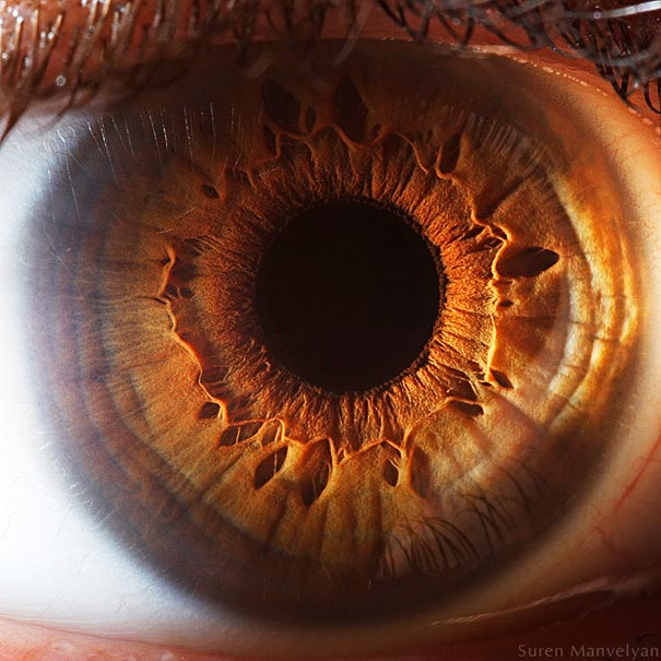 yeux 11