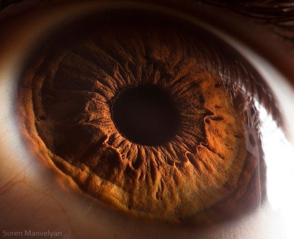 yeux 13 srcset=