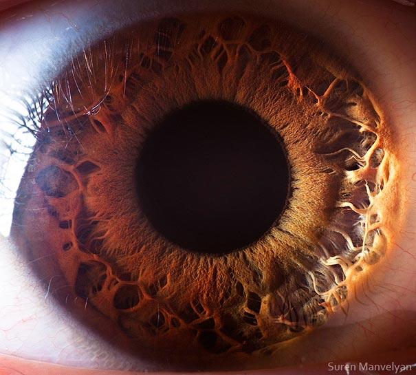 yeux 14 srcset=