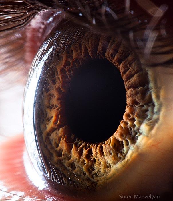 yeux 16 srcset=